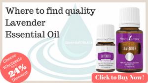 Lavender Essential Oil Essentialoils Life
