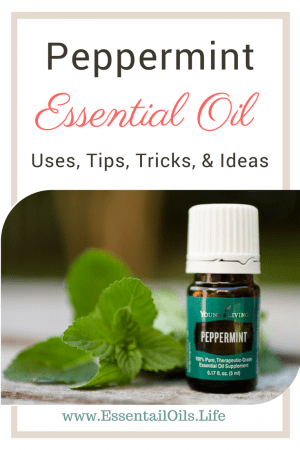 Ideas, uses, tips, and tricks for peppermint essential oil