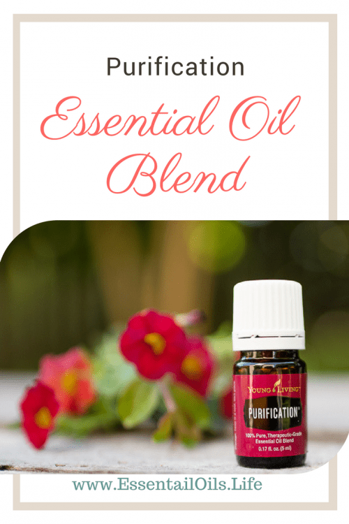 Tips, tricks, and uses for Purification Essential Oil Blend