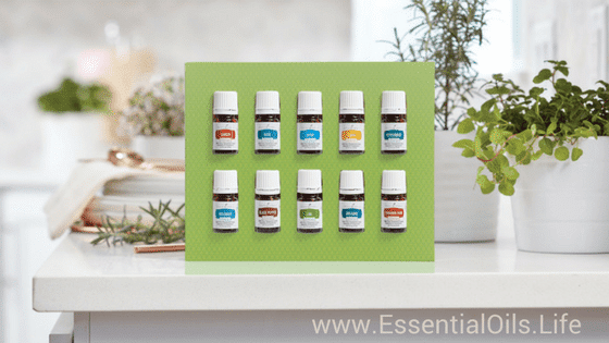Essential oils require special care. Learn more about what is required to store your essential oils, and check out our ideas on how to store them with boxes, cases, shelves, wall hangings, and counter top displays.