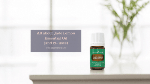 jade lemon; jade lemon essential oil; jade lemon vitality essential oil; young living jade lemon essential oil;