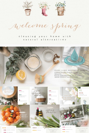 Hello Springtime! And a double hello to springtime DIY essential oil diffuser blends. Because creating your own spring diffuser blends are so much fun, leaving bright, clean, floral, citrus, crisp aromas in your home just feels invigorating! In this article, we spill all our favorites!